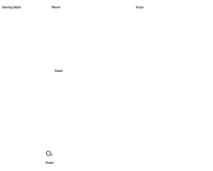 monangi beer proces